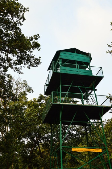 The watch tower, last stop of the jungle safari